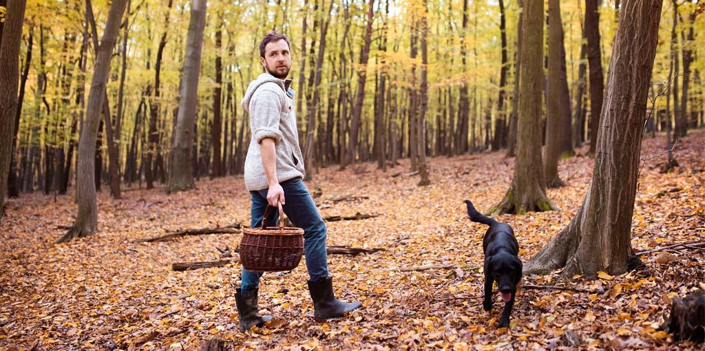 Ung man plockar svamp i sällskap av svart labrador